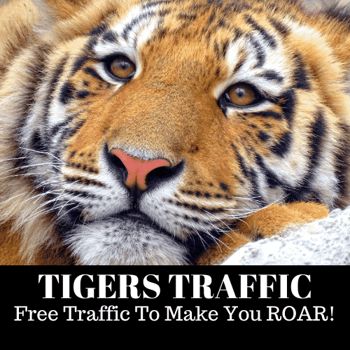 Tigers Traffic Logo