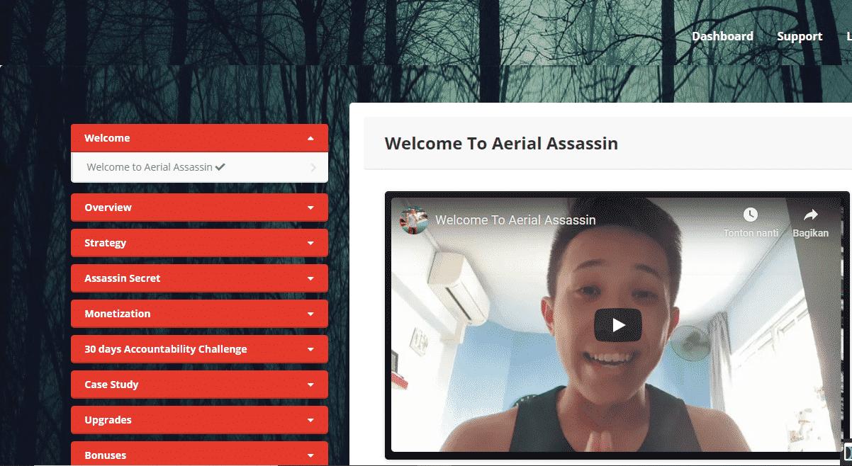 Aerial Assassin Review: Make Big Money Using Free Organic Traffic 2